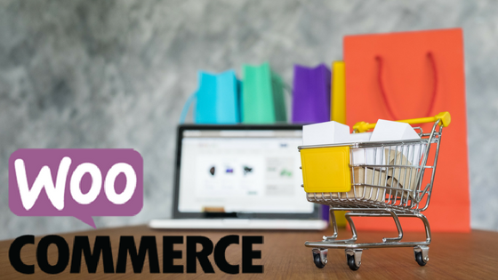 WooCommerce Guide to Boost E-commerce Sales